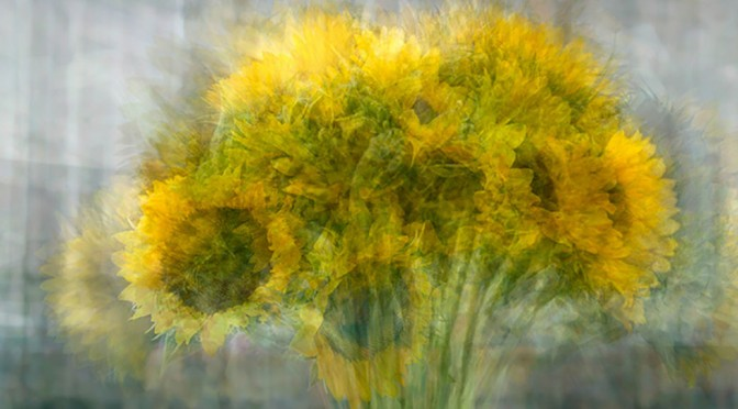 Sunflowers In The Round - an example of photo impressionism in still life